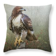 Hawk And Barbed Wire Throw Pillow
