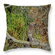 Hawk In Hiding Throw Pillow