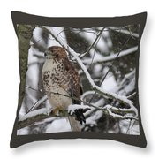 Hawk In Winter Throw Pillow