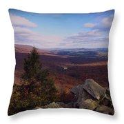 Hawk Mountain Sanctuary Throw Pillow by David Dehner