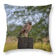 Hawk On A Fence Post Throw Pillow