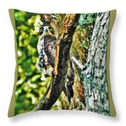 Hawk On Blue Hole Road Throw Pillow