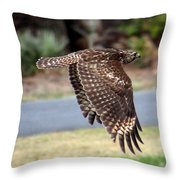 Hawk On The Fly Throw Pillow