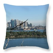 Hawk Over Sydney Harbour Throw Pillow