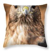 Hawk Eyes Throw Pillow