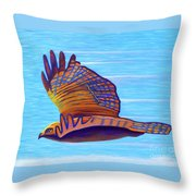 Hawk Speed Throw Pillow