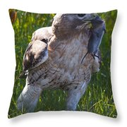 Hawk With Dinner Throw Pillow
