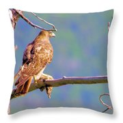 Hawk With Prey Throw Pillow