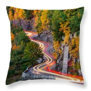 Hawk's Nest Throw Pillow