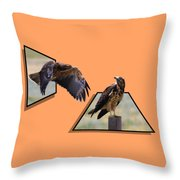 Hawks Throw Pillow by Shane Bechler