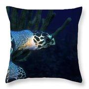 Hawksbill Sea Turtle 2 Throw Pillow