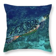 Hawksbill Sea Turtle 5 Throw Pillow