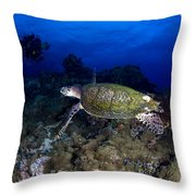 Hawksbill Turtle Swimming With Diver Throw Pillow by Steve Jones