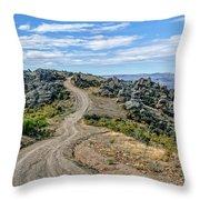 Hawksburn Road Throw Pillow