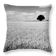 Hawksmoor Throw Pillow