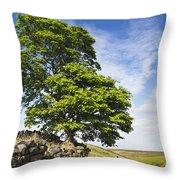 Haworth Moor Sycamore Throw Pillow