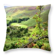 Hawthorn Branch With View To Wicklow Hills. Ireland Throw Pillow