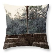 Hay , Open Seating  Throw Pillow