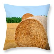 Hay Bale With Crane Throw Pillow