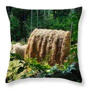 Hay Bay Rolls 2 Throw Pillow