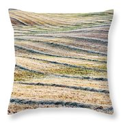 Hay Billows II Throw Pillow