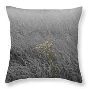 Hay Daisy In The Fog Throw Pillow