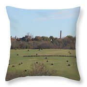 Peaceful Hay Field Throw Pillow