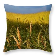 Hay Field Ready To Cut Throw Pillow