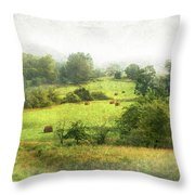 Hay Fields Throw Pillow