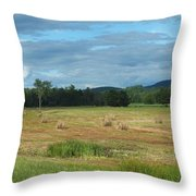 Hay Fields In The Adirondacks Throw Pillow
