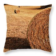 Hay In The Field Throw Pillow