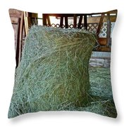 Hay Is For Horses Throw Pillow