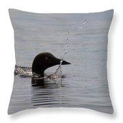 Hay Lake Loon 4 Throw Pillow