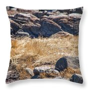 Hay Ocean Rocks Throw Pillow