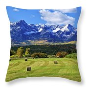 Hay With A View Throw Pillow