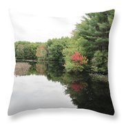 Haybrook Maine Foliage 6 Throw Pillow