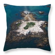 Hazard To Navigation Throw Pillow