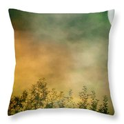 Haze On Moonlit Meadow Throw Pillow