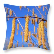 Hazelnut Tassels Throw Pillow