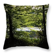 Hazelwood Co. Sligo Ireland. Throw Pillow