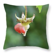 He Throw Pillow