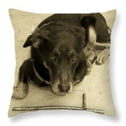 He Gets It In Sepia  Throw Pillow