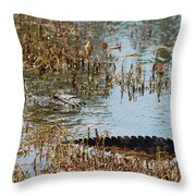 Head And Tail Throw Pillow