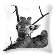 Head In The Trees Throw Pillow