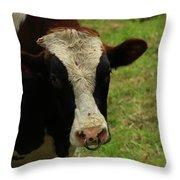 Head Of A Bull On A Farm Throw Pillow