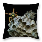 Head-on - Paper Wasp - Nest Throw Pillow