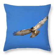 Head On Soar Throw Pillow