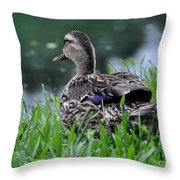Headed For The Lake Throw Pillow