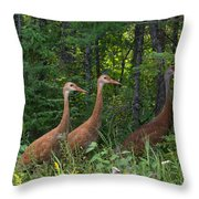 Headed For The Woods Throw Pillow