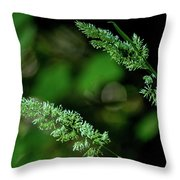 Headed Out Throw Pillow